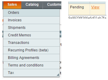 Create a shipping module in Magento
